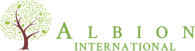 Albion International Mobile Retina Logo